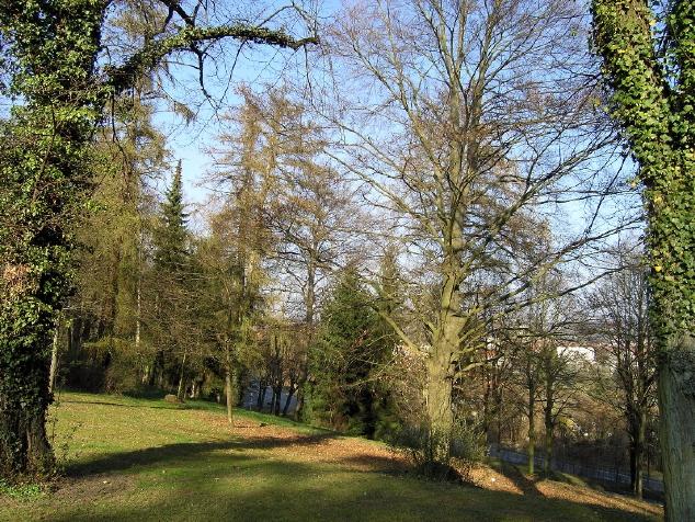 Park des ehemaligen LKH Göttingen