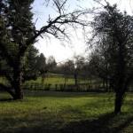 Asklepios Göttingen, Parkimpressionen