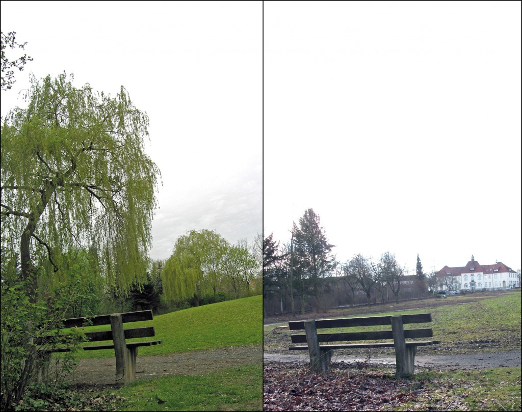 Leineberg-Park 2012 und 2013