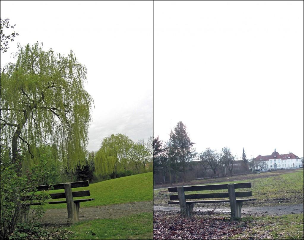 Leineberg-Park 2012 und 2013